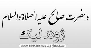 د حضرت صالح علیه الصلاة والسلام ژوند لیک